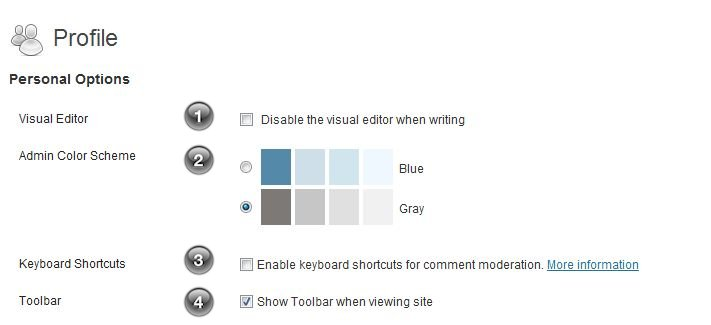 WordPress Your Profile personal options
