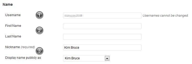 WordPress Your Profile profile-name