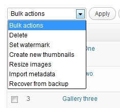 manage-nextgen-gallery-bulk-actions