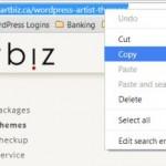 browser address bar copy
