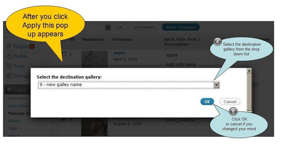 copy of move images between nextgen galleries 2