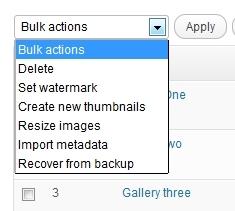 manage-nextgen-gallery-bulk-actions