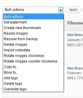 manage-nextgen-gallery-bulk-actions2
