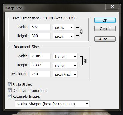 Image resize dialogue box