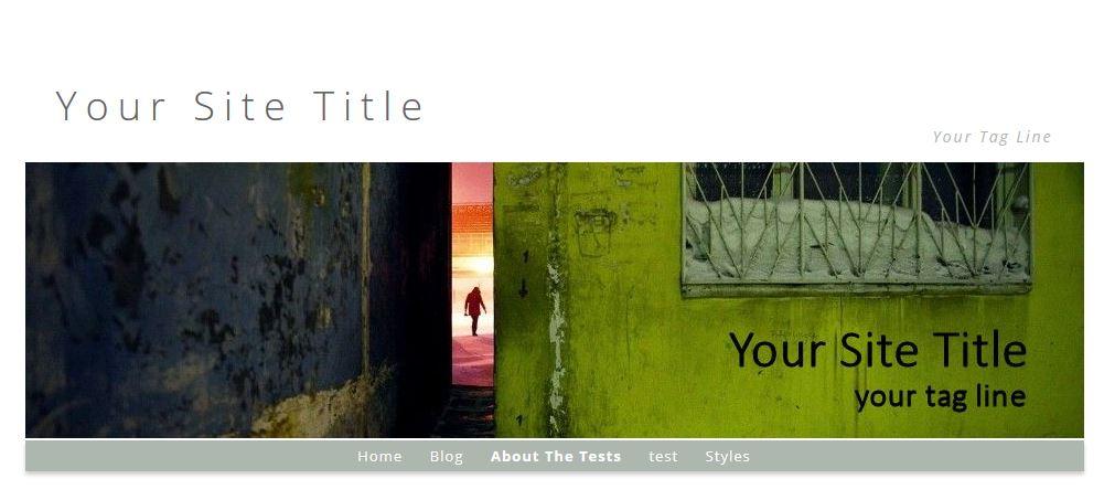 artbiz-remove-site-title-wordpress-2