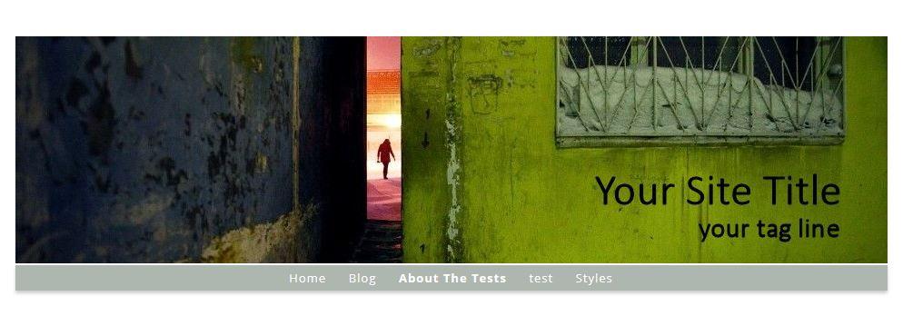 artbiz-remove-site-title-wordpress-3